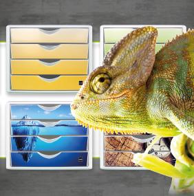 f/ür Format DIN A4 4 Schubladen 1 St/ück eisberg Schubladenbox the chameleon arctic Helit H6129635